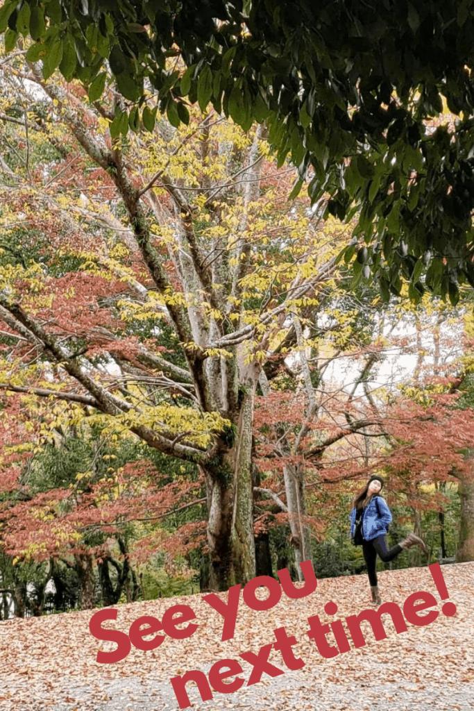 End of Nara Itinerary
